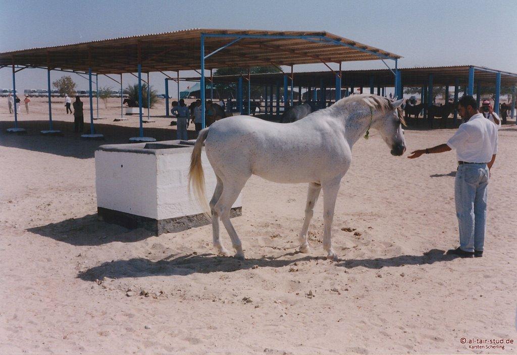 1998 WAHO Bahrain