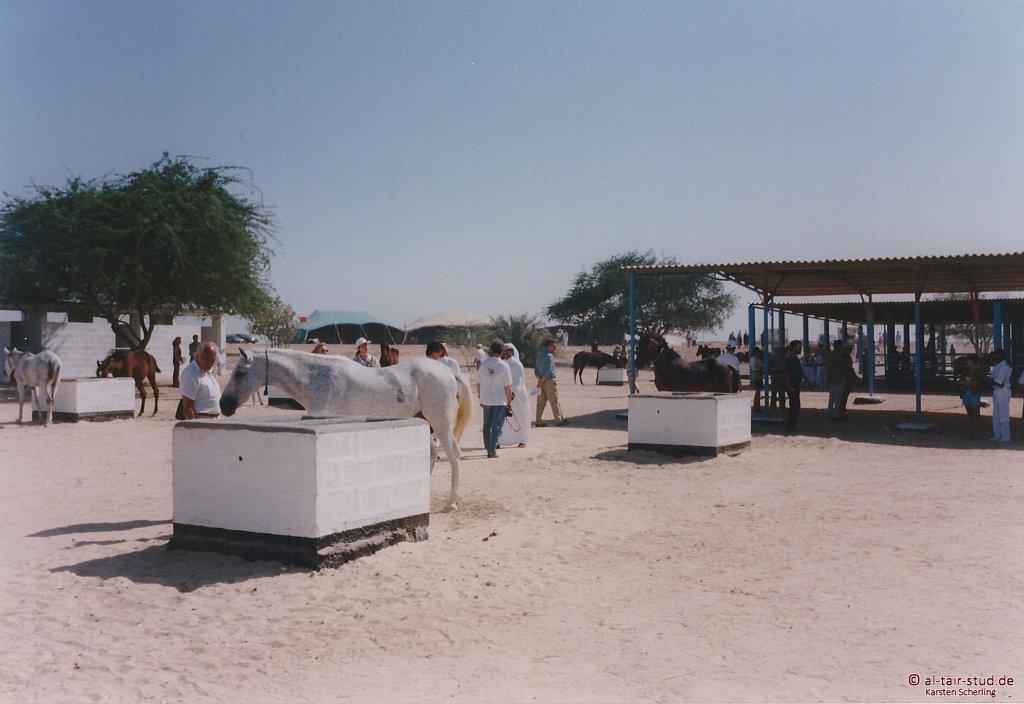 1998-WAHO-Bahrain-06.jpg