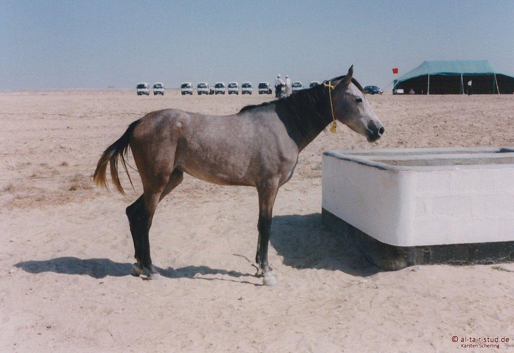 1998-WAHO-Bahrain-10.jpg