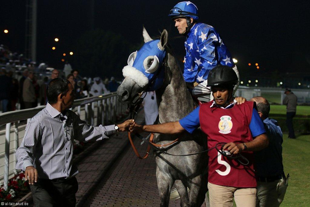 2014 Nov 12 - Arabian Horse Race