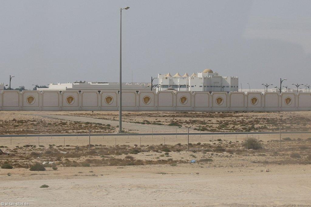 20141118a-008-QatarStateStudP-IMG-7704-o.jpg