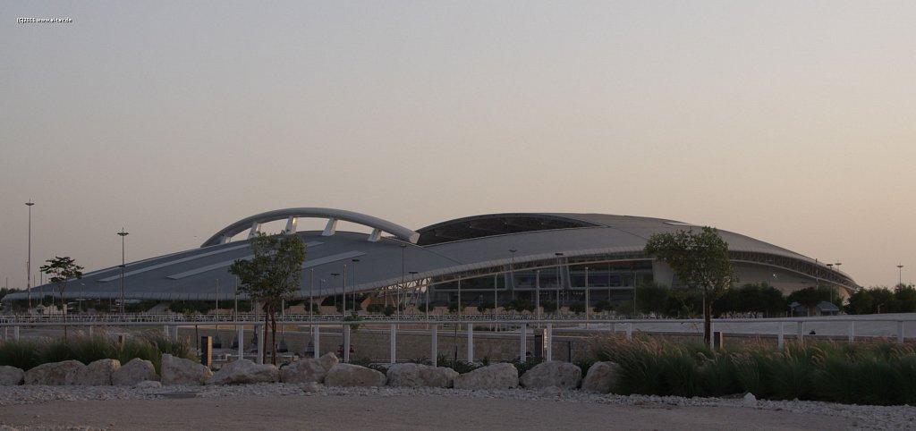 2011 Nov 03 - Al Shaqab Stud
