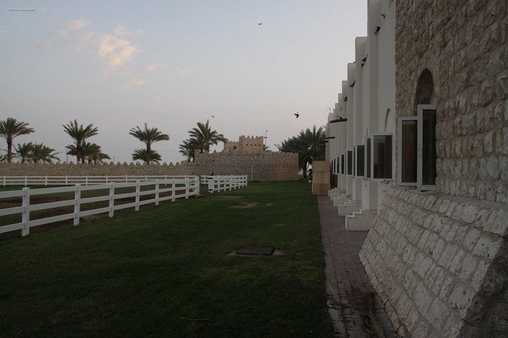WAHO111107KSL-Al-Shahania-021.jpg
