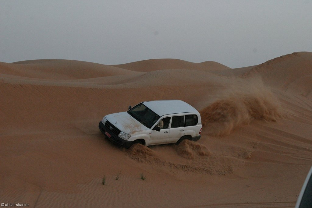 2009 Feb 09 -A2- Dune bashing