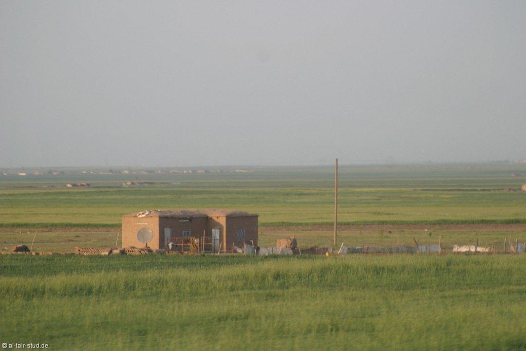 2007-05-01-1813-WAHO-SYR-KSL-IMG-7169.jpg