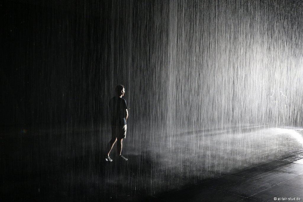 2019 11 11 Rain Room