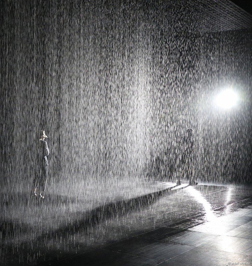 2019-11-11d-AC-SH-Rain-7D2-6965a.jpg