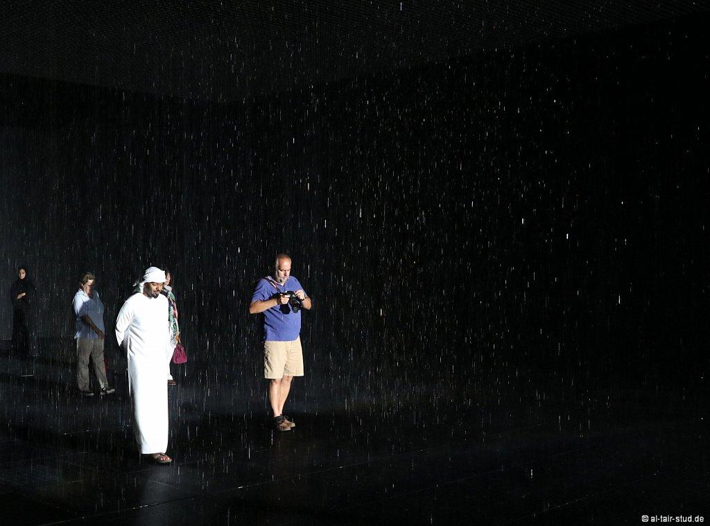 2019-11-11d-AC-SH-Rain-7D2-6990.jpg