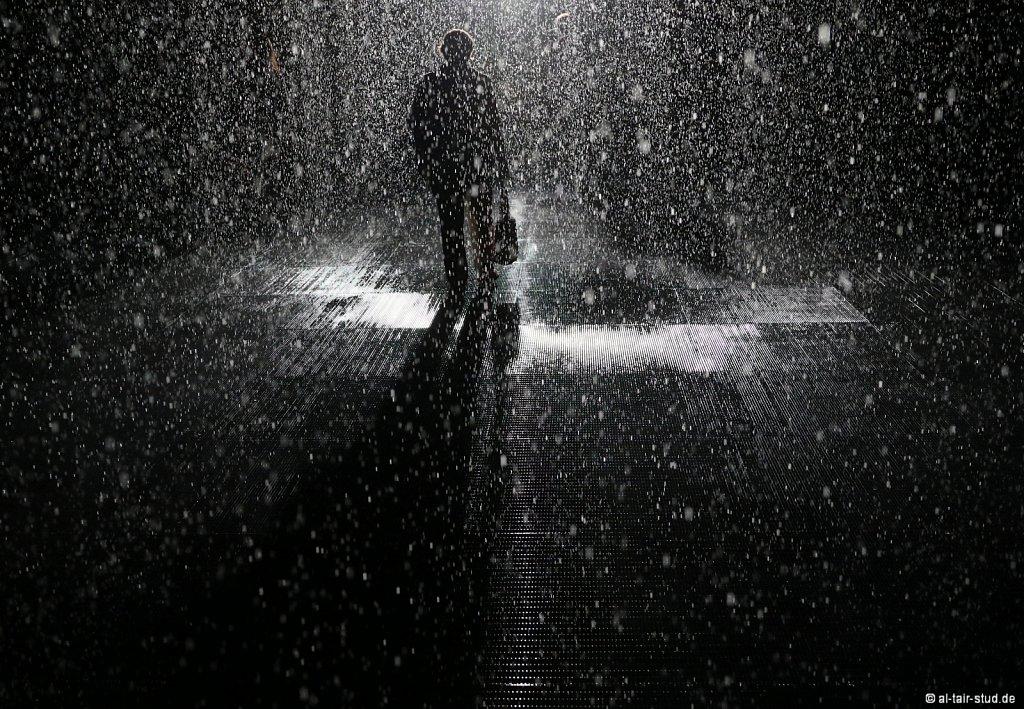 2019-11-11d-AC-SH-Rain-7D2-6998.jpg