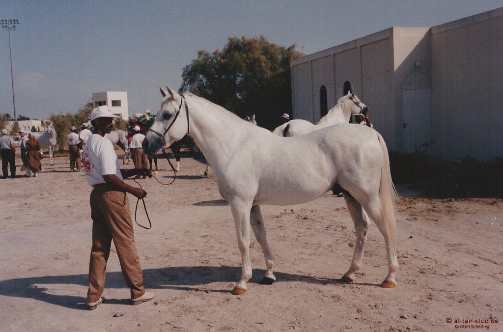 1996 Nov 15 - A Day In Bahrain