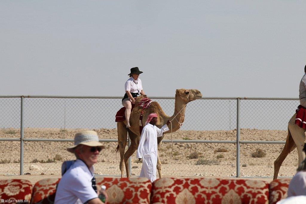 20141116a-047-CamelFarm-IMG-6288-o.jpg