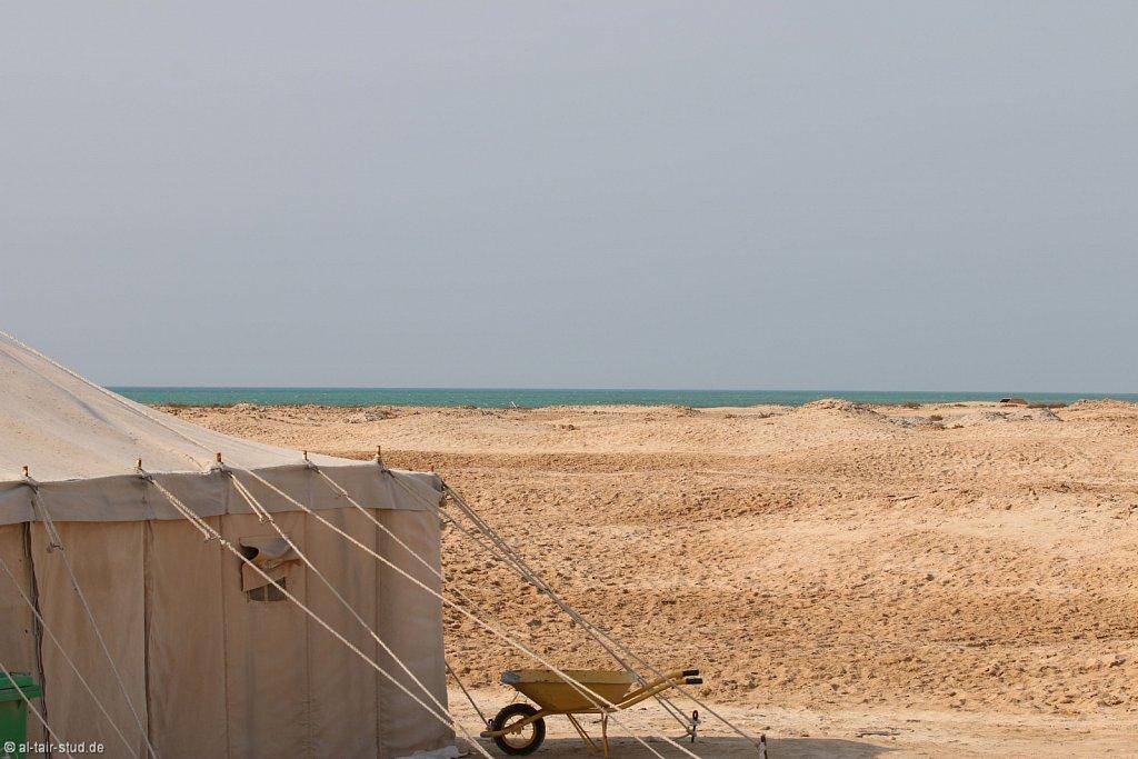 20141118b-022-AlZubaraFort-IMG-7783-o.jpg