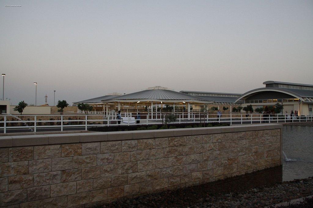 WAHO111103KSL-Al-Shaqab-033.jpg