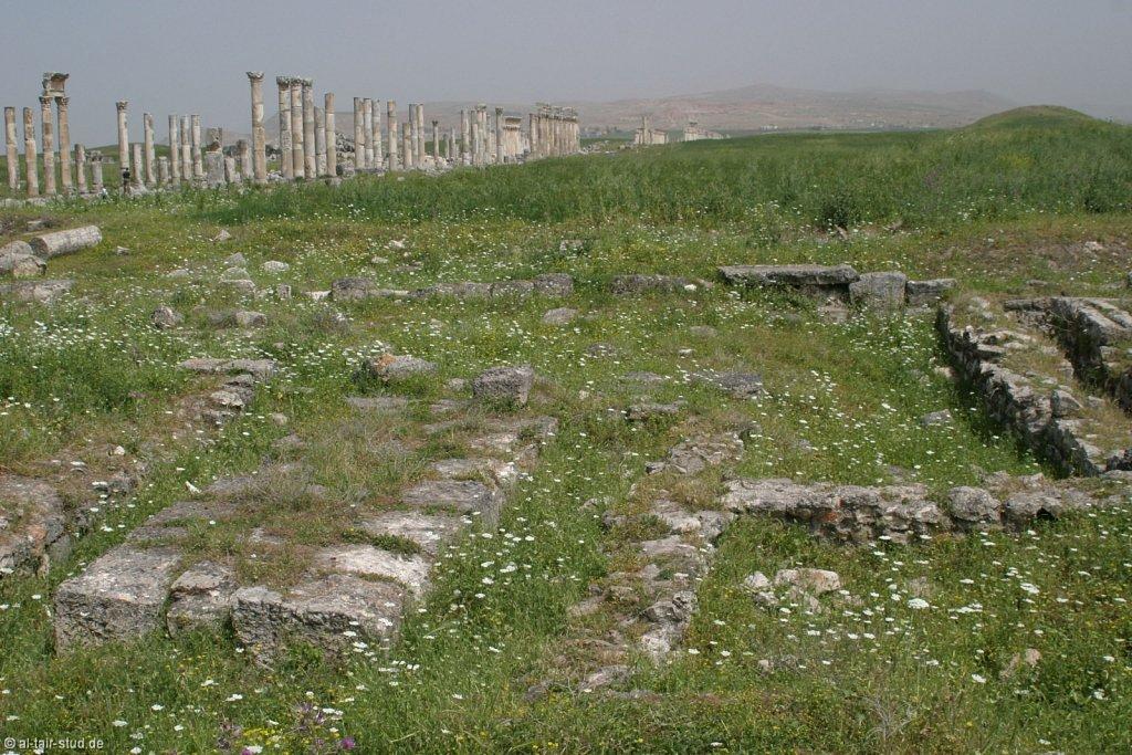2007-05-04-1052-WAHO-SYR-KSL-IMG-8358.jpg