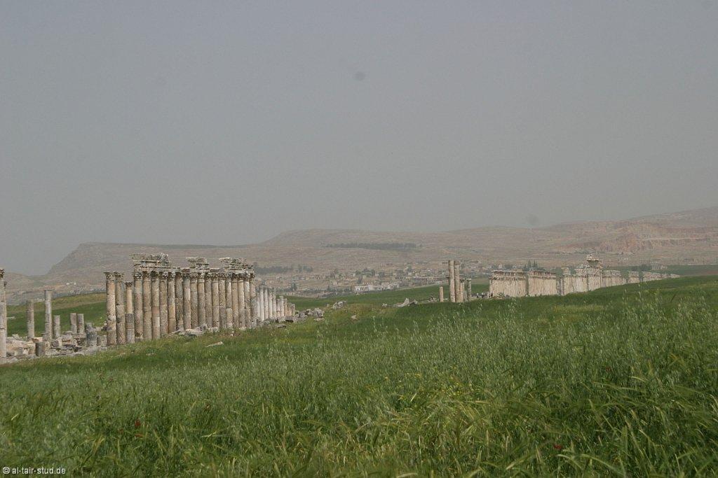 2007-05-04-1053-WAHO-SYR-KSL-IMG-8360.jpg