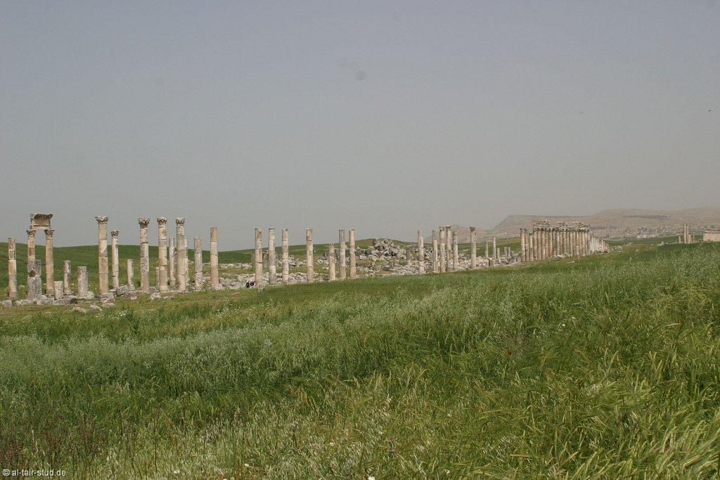 2007-05-04-1053-WAHO-SYR-KSL-IMG-8361.jpg