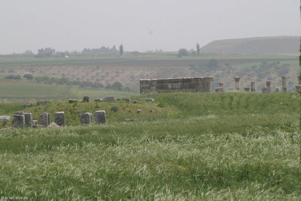 2007-05-04-1058-WAHO-SYR-KSL-IMG-8367.jpg