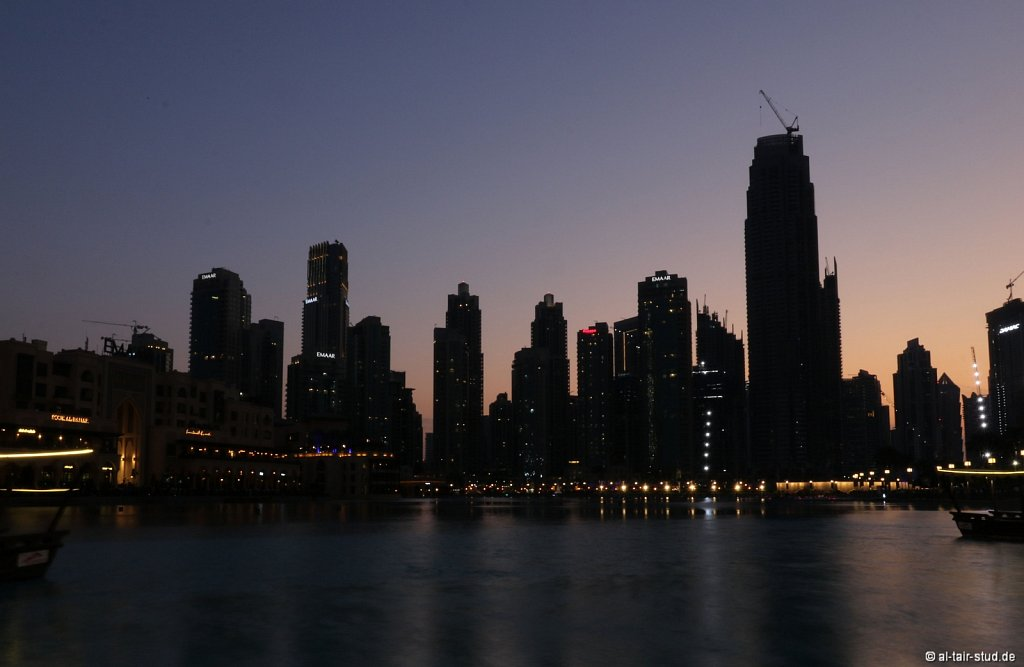 2019-11-08-AC-SH-Doha-087A5139.jpg