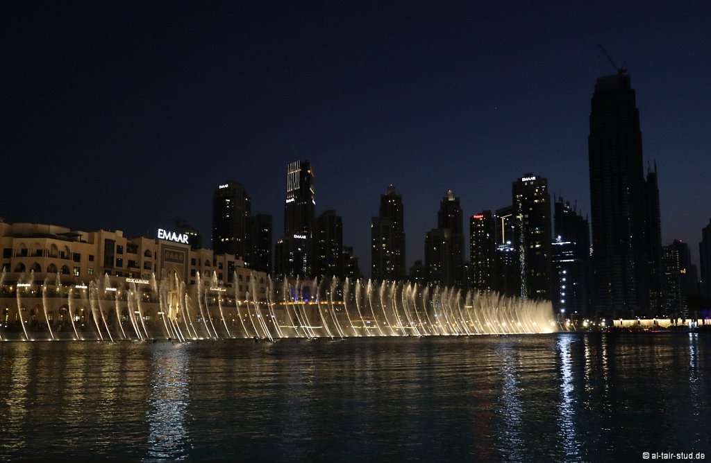 2019-11-08-AC-SH-Doha-087A5156.jpg