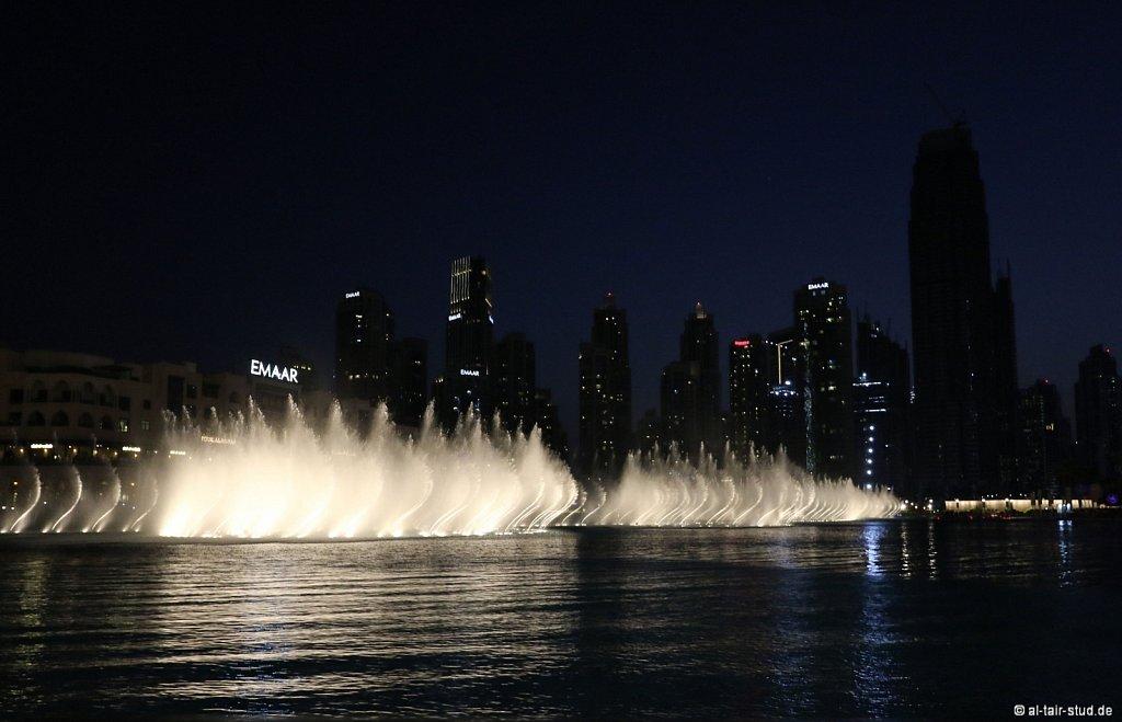 2019-11-08-AC-SH-Doha-087A5160.jpg
