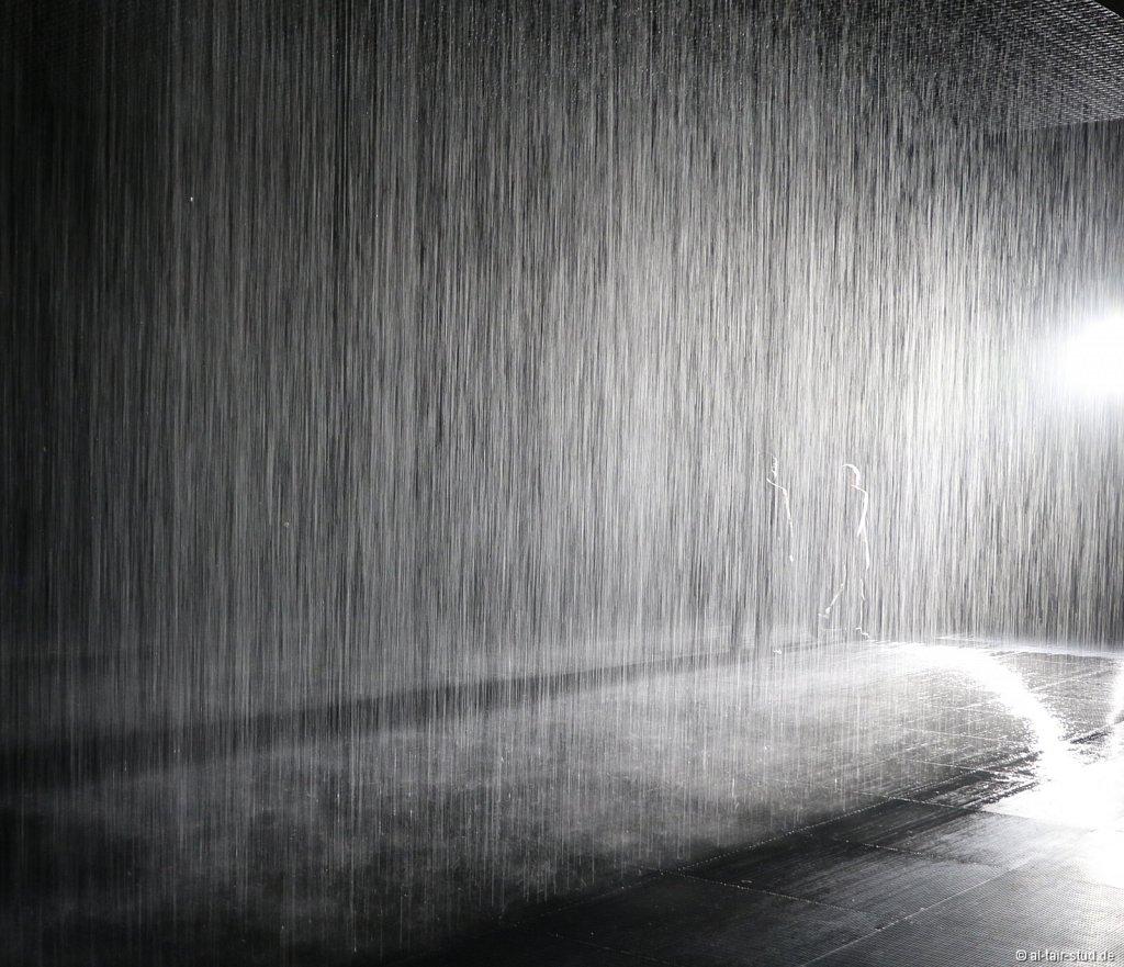 2019-11-11d-AC-SH-Rain-7D2-6937.jpg