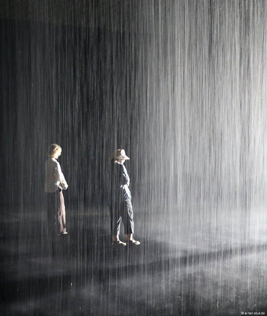 2019-11-11d-AC-SH-Rain-7D2-6956.jpg