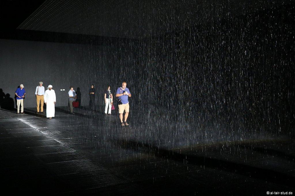 2019-11-11d-AC-SH-Rain-7D2-6985.jpg