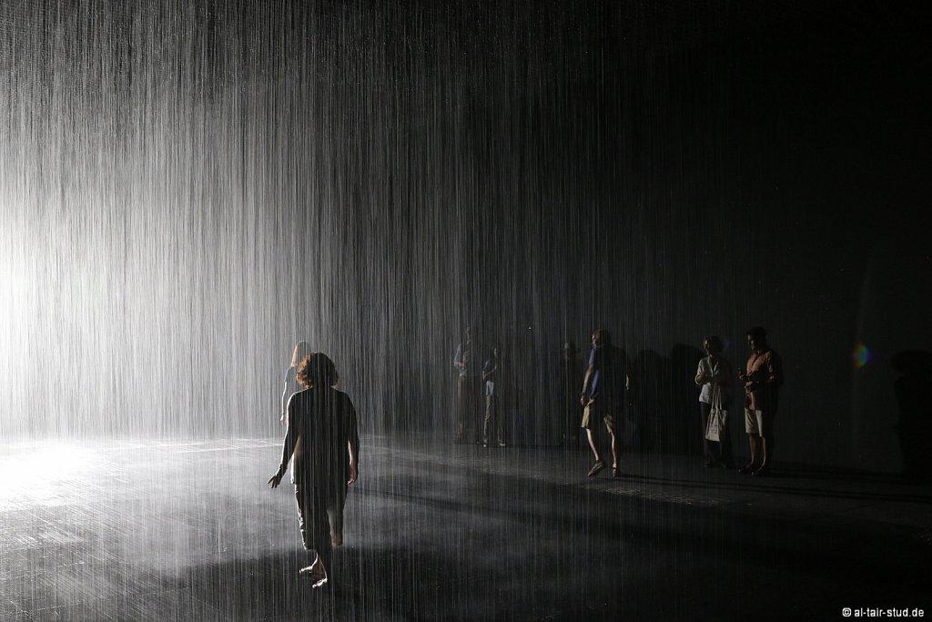 2019-11-11d-AC-SH-Rain-7D2-7036.jpg