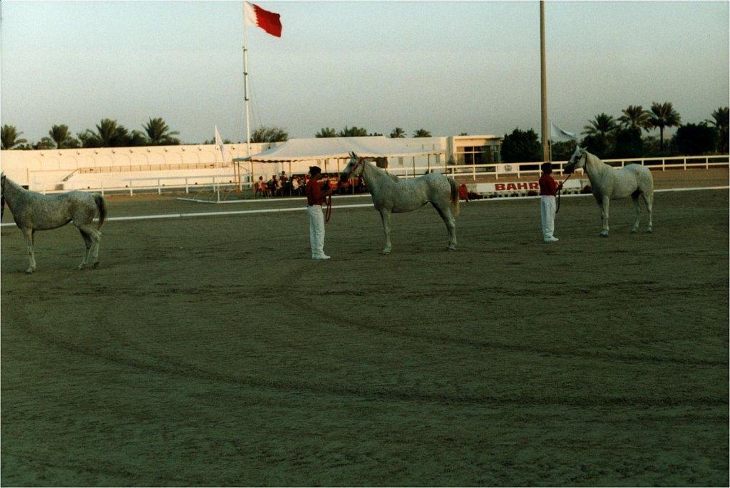 1998-WAHO-Bahrain-Archiv-Hansi-Heck-Melnyk-18.jpg